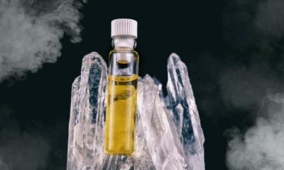 cbd oil florida disney